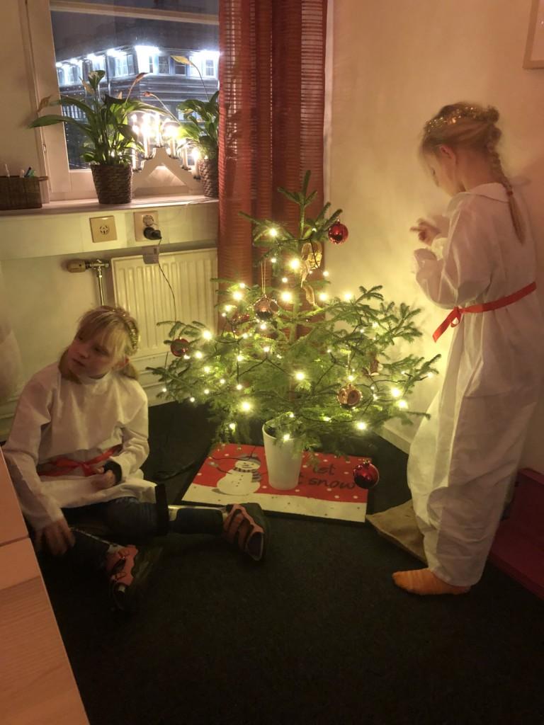 Lucior runt julgran uppsala glaucus assistans